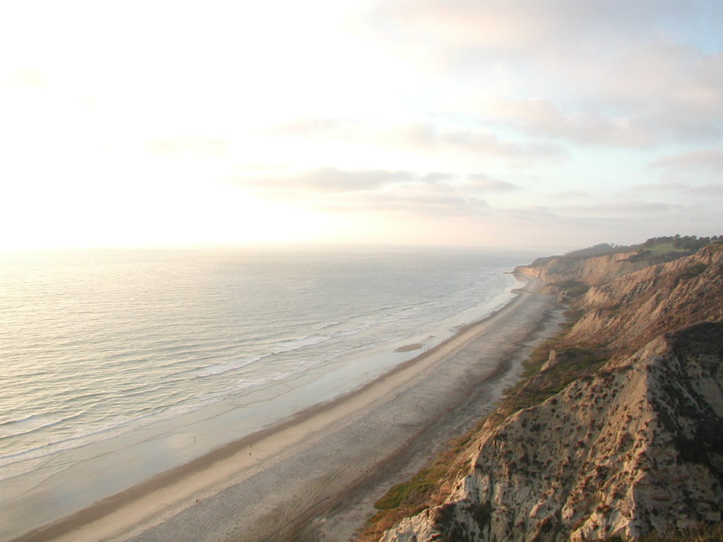 Homes For Sale Near Torrey Pines Beach